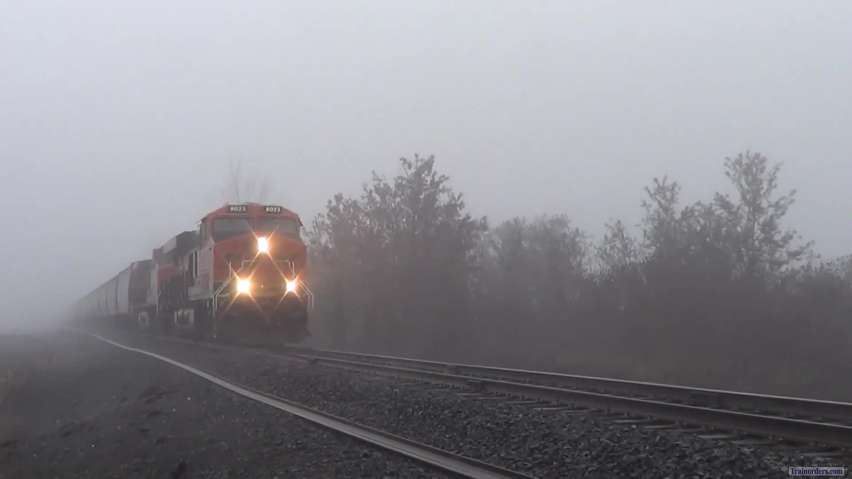 Coming out of and going into the fog