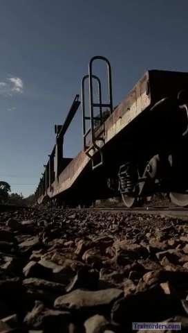 Trains L161 and V092 (Brazil)