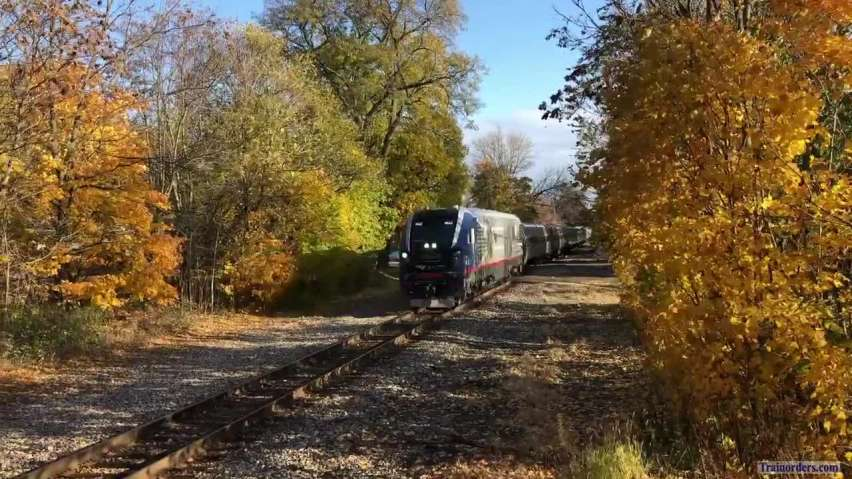 11/4/19 Amtrak 365 in a Tunnel of Trees in Michigan