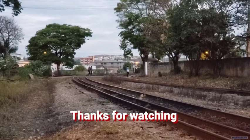 Empty and loaded logging trains (Brazil)