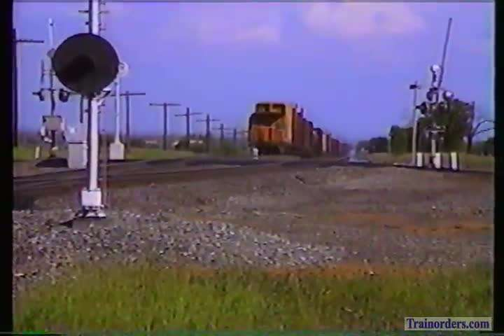 SP 7328 at Ostrom 1991