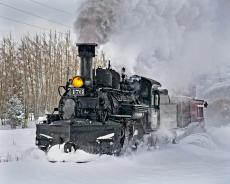 Lots of snow on the D&S